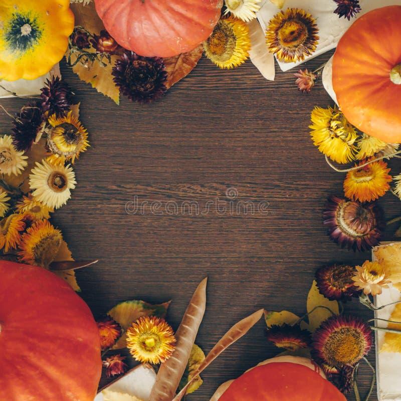 Il fondo di ringraziamento con i fiori, le zucche e la caduta secchi autunno va sui vecchi precedenti di legno Concetto abbondant fotografia stock libera da diritti