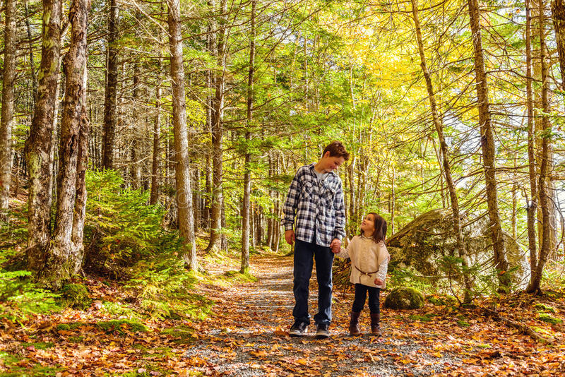 Il fratello e la sorella che camminano lungo il parco trascinano insieme fotografia stock libera da diritti