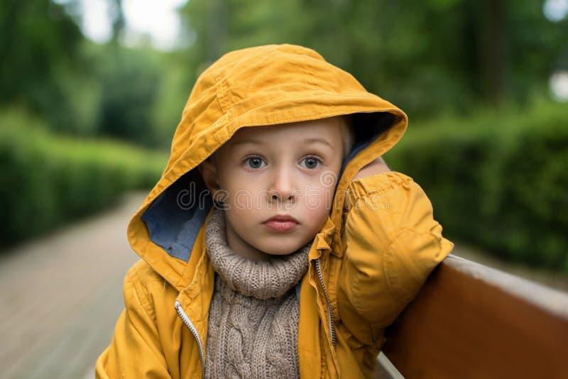 Il fronte di un triste, ragazzino, con i grandi bei occhi fotografia stock libera da diritti
