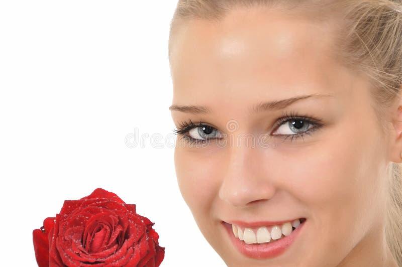 Il fronte ed il colore rosso sono aumentato con le gocce dell'acqua immagini stock