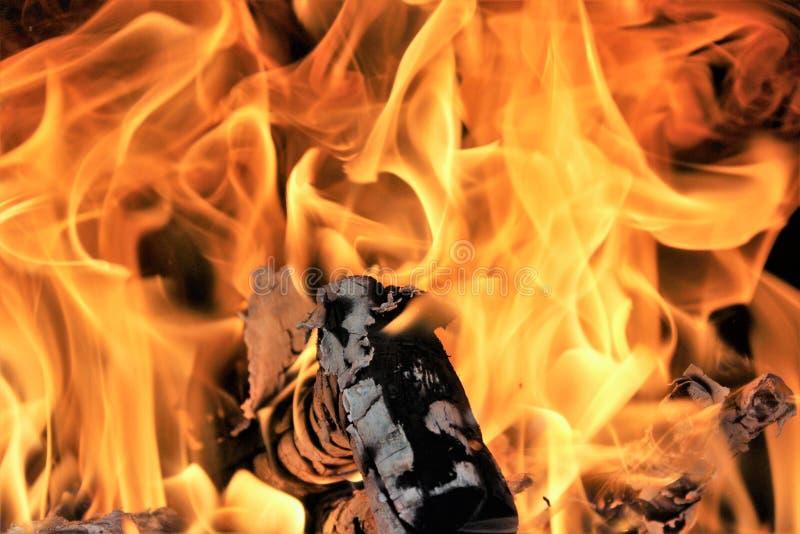 Il fuoco immagini stock