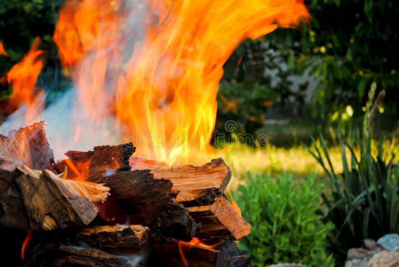 Il fuoco del falò su legno collega un barbecue sui precedenti dell'erba immagini stock libere da diritti