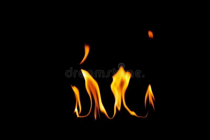 Il fuoco fiammeggia la priorit? bassa fotografia stock
