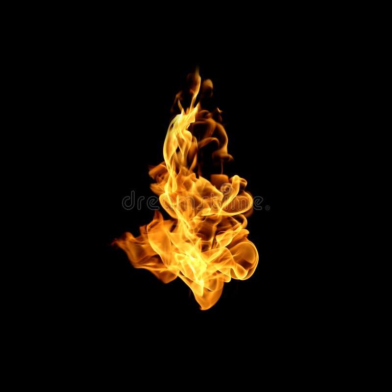Il fuoco fiammeggia la raccolta isolata su fondo nero fotografia stock