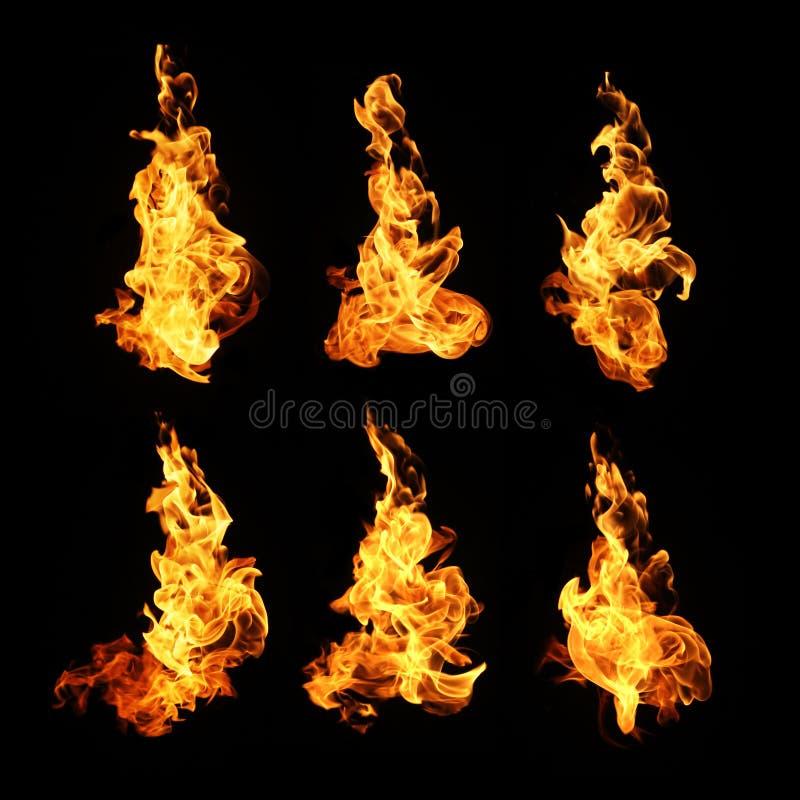 Il fuoco fiammeggia la raccolta isolata su fondo nero immagine stock