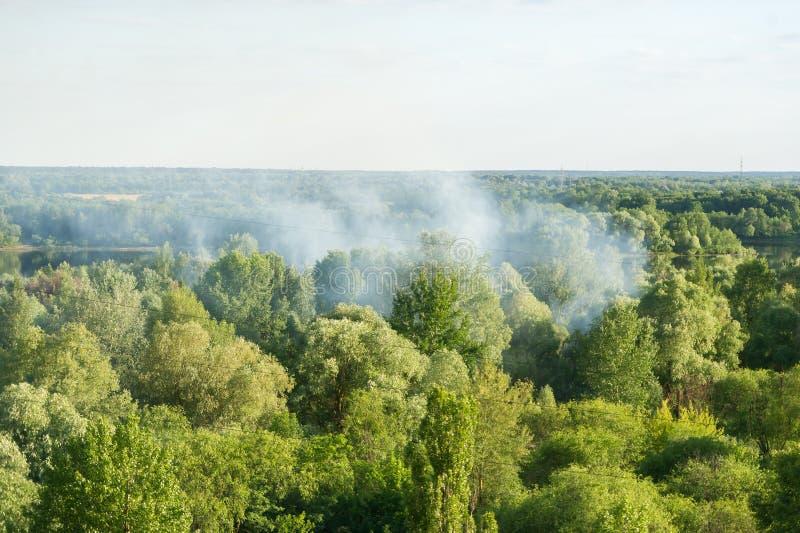 Il fuoco nel legno Fotografando dall'altezza del volo del ` s dell'uccello fotografia stock libera da diritti