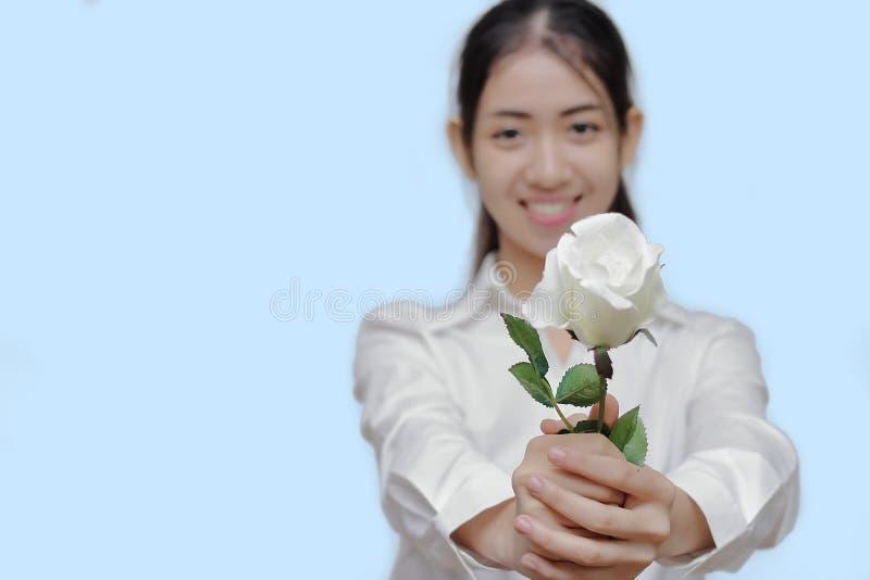 Il fuoco selettivo sulla rosa di bianco è tenuto a mano di giovane donna asiatica attraente su fondo isolato blu Concetto di gior fotografia stock libera da diritti