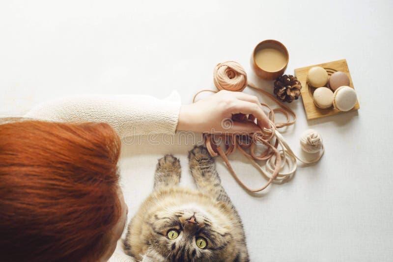 Il gatto cerca la destra alla macchina fotografica Giovane donna con il latte rosso della bevanda dei capelli fotografia stock libera da diritti