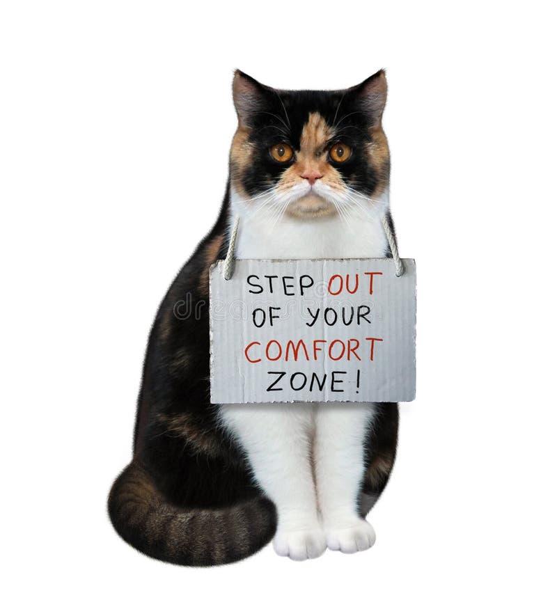 Il gatto comincia una nuova vita immagini stock libere da diritti