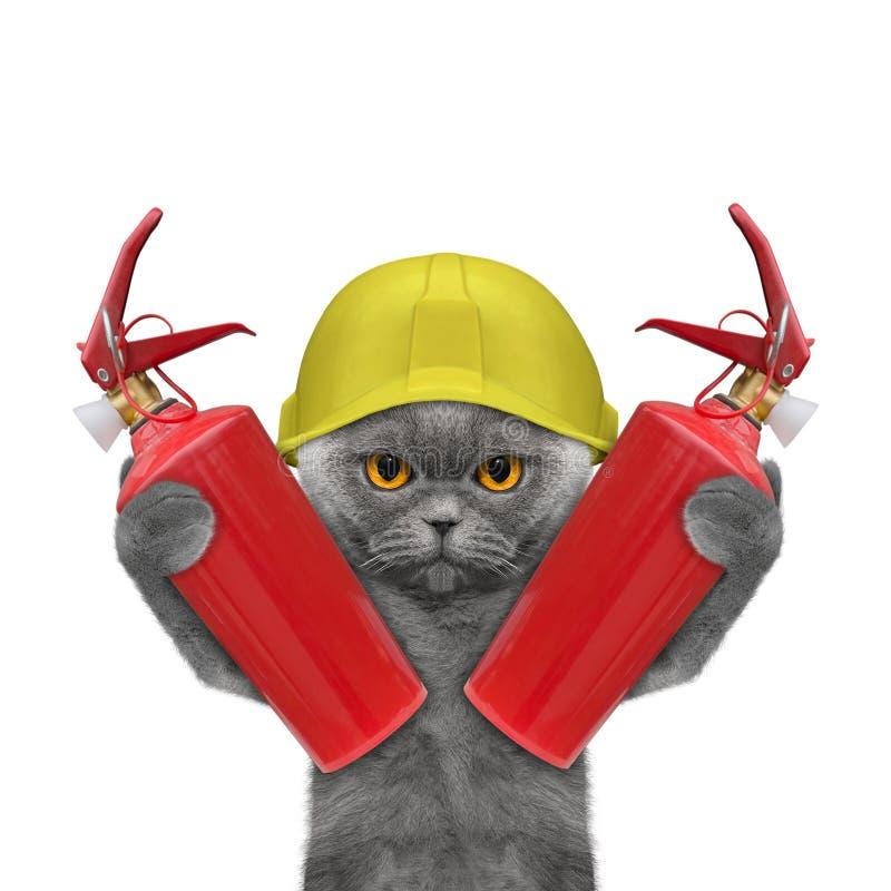 Il gatto del pompiere è pronto a lavorare illustrazione di stock
