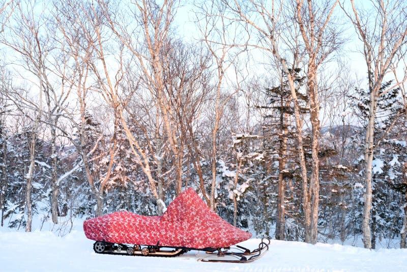 Il gatto delle nevi nella foresta nevosa davanti agli alberi immagini stock