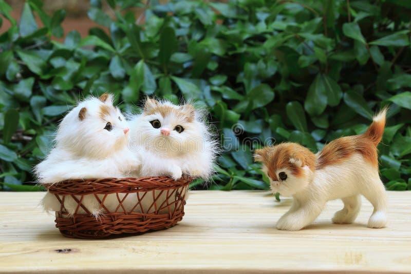 Il gatto due nel canestro con un gatto che cammina al pavimento immagini stock