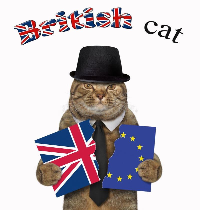 Il gatto tiene due pezzi di bandiera 3 fotografia stock libera da diritti