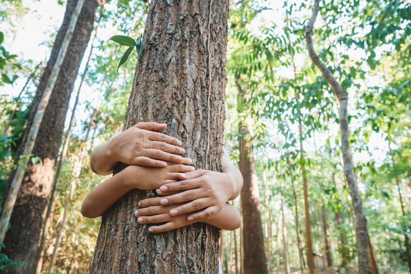 Il genitore ed il bambino abbracciano il vecchio albero fotografia stock libera da diritti