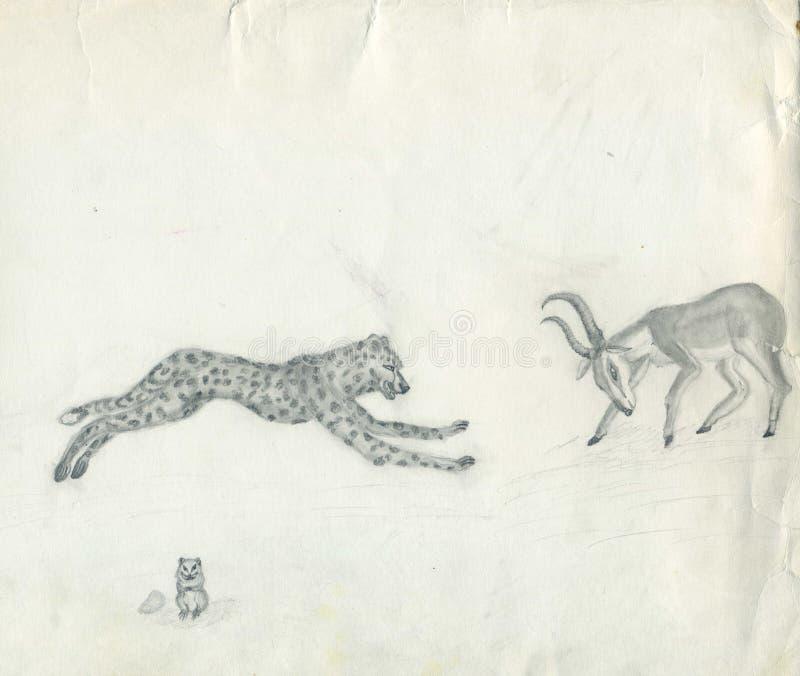 Il ghepardo attacca l'antilope illustrazione vettoriale