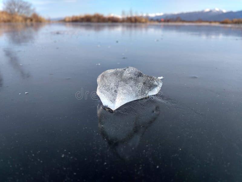 Il ghiaccio dall'acqua della palude si trova sul ghiaccio della palude fotografia stock