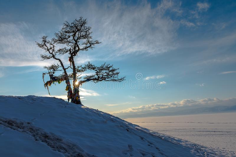 Il ghiaccio del lago Baikal, Russia marzo 2018 fotografie stock libere da diritti