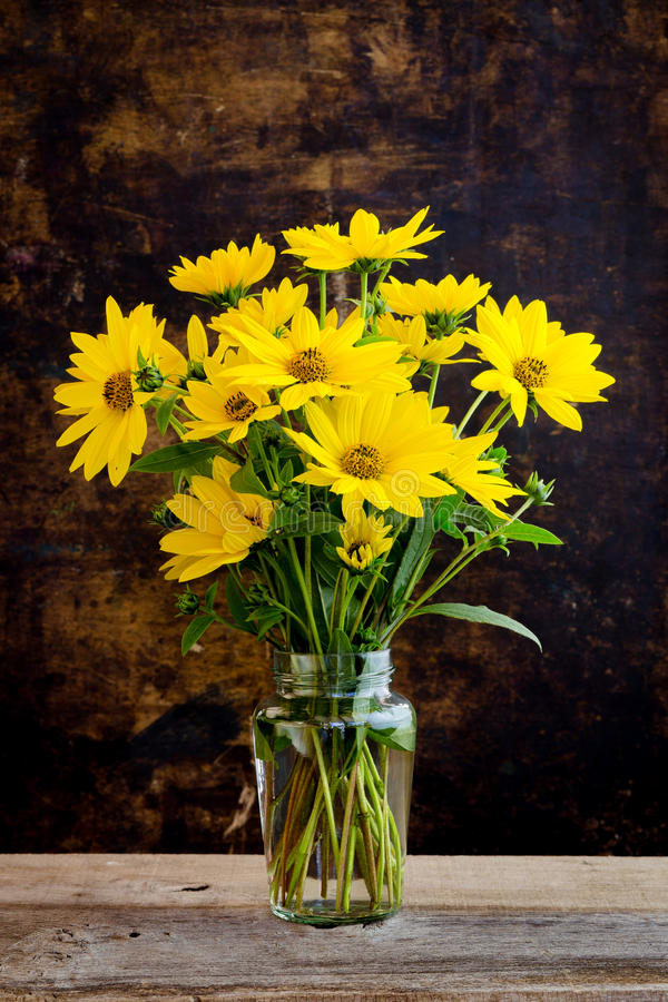 Il giallo luminoso di Rudbeckia fiorisce il mazzo su fondo scuro fotografia stock libera da diritti