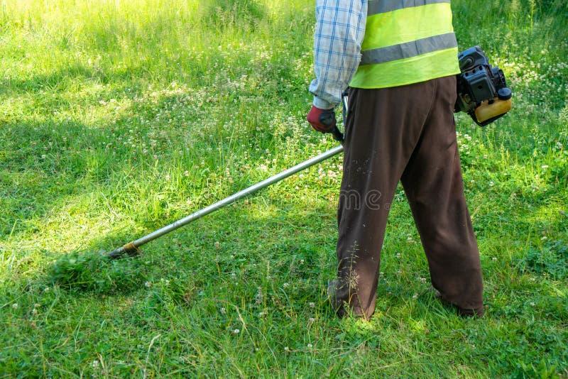 Il giardiniere che taglia erba dalla falciatrice da giardino, cura del prato inglese immagine stock libera da diritti