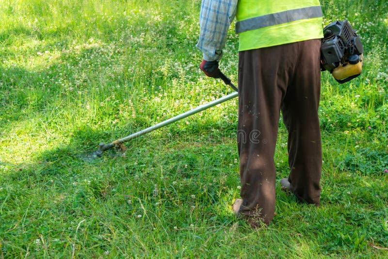Il giardiniere che taglia erba dalla falciatrice da giardino, cura del prato inglese immagini stock