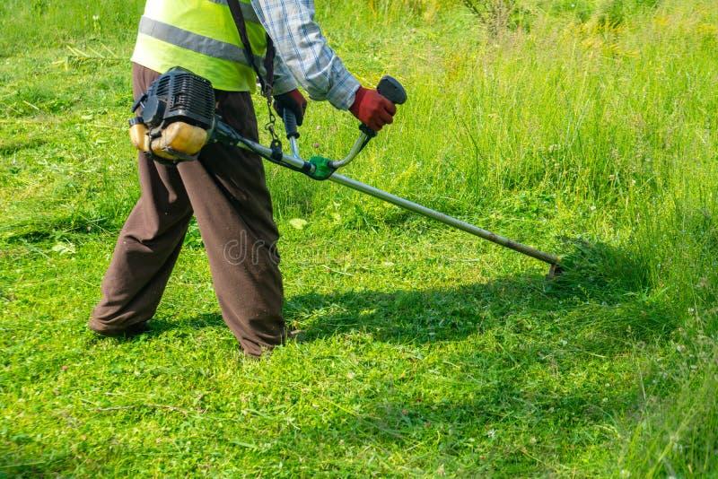 Il giardiniere che taglia erba dalla falciatrice da giardino, cura del prato inglese fotografie stock