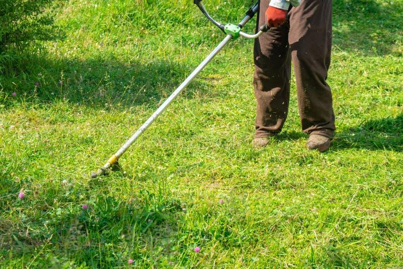 Il giardiniere che taglia erba dalla falciatrice da giardino, cura del prato inglese fotografie stock libere da diritti