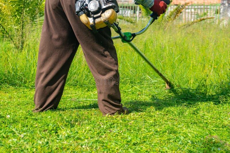 Il giardiniere che taglia erba dalla falciatrice da giardino, cura del prato inglese fotografia stock libera da diritti