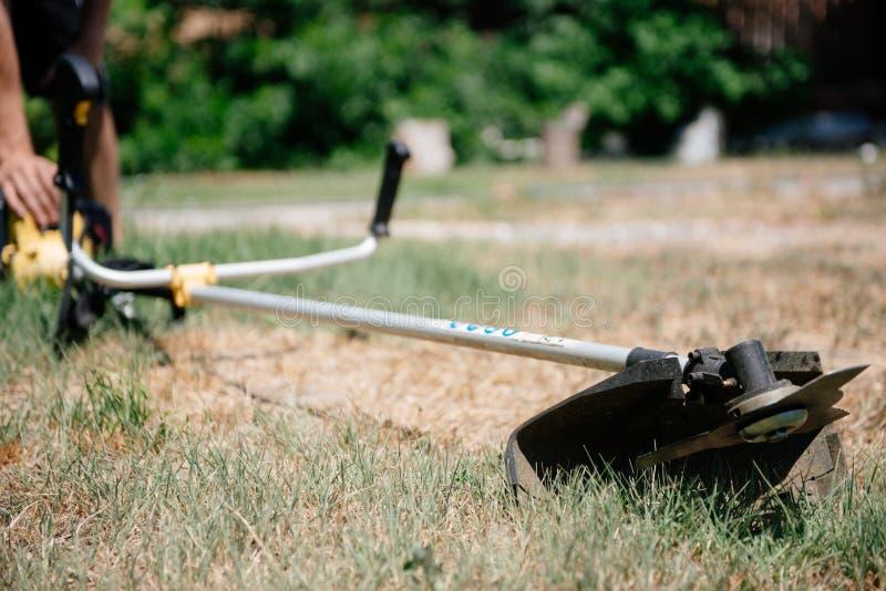 Il giardiniere falcia l'erba con un regolatore nell'iarda di estate fotografie stock