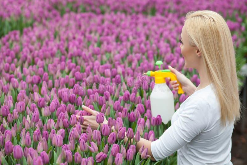 Il giardiniere femminile allegro è fiori della molla di innaffiatura fotografia stock