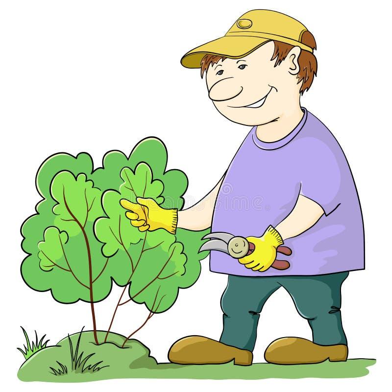 Il giardiniere taglia un cespuglio illustrazione vettoriale