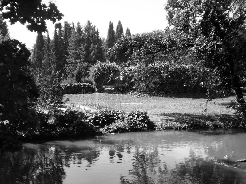 Il giardino fotografia stock libera da diritti