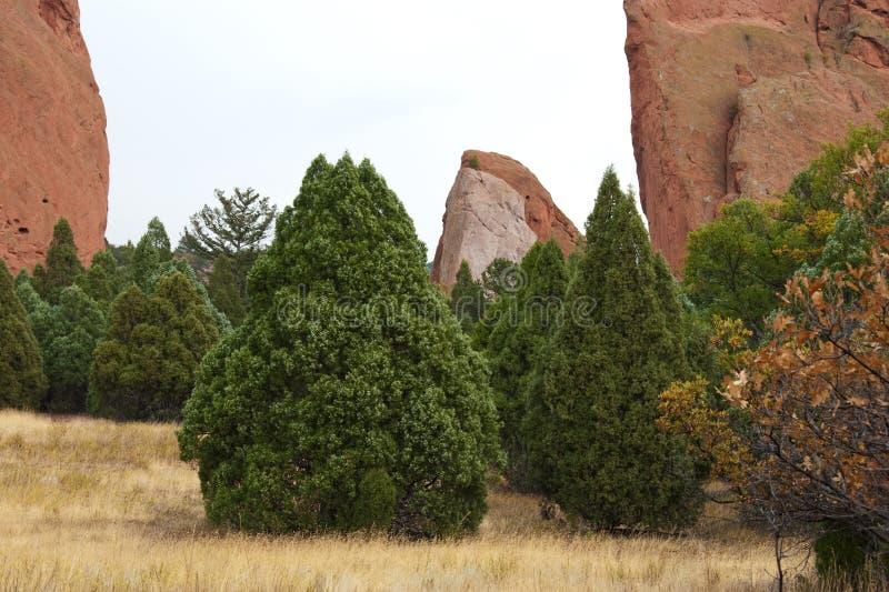 Il giardino dei dei parcheggia, Colorado fotografia stock libera da diritti