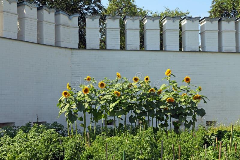 Il giardino del monastero ad un vecchio muro di mattoni in Siberia fotografia stock