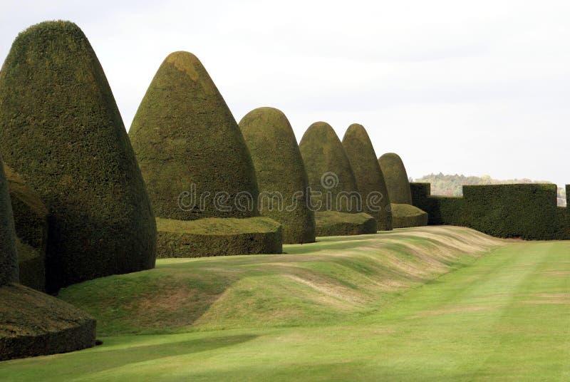 Il giardino dell'ars topiaria del tasso, Chirk il castello, Galles, Inghilterra fotografie stock
