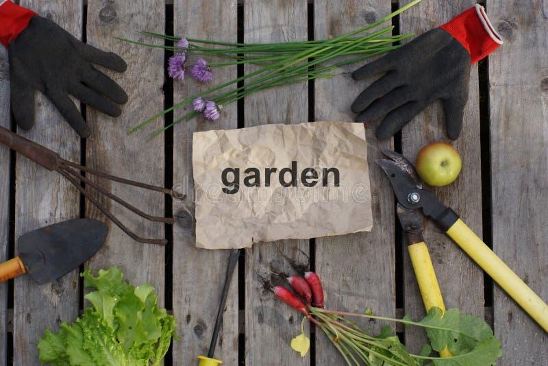 Il giardino di parola scritto sulla carta del mestiere circondata dagli attrezzi per bricolage del giardino e da un raccolto di e fotografie stock libere da diritti