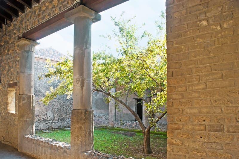 Il giardino interno in vecchia villa immagine stock