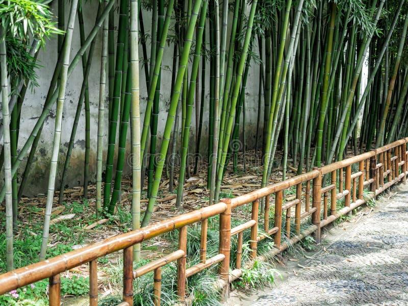 Il giardino prolungato, un giardino cinese classico rinomato, riconosciuto come sito del patrimonio mondiale dell'Unesco a Suzhou fotografia stock