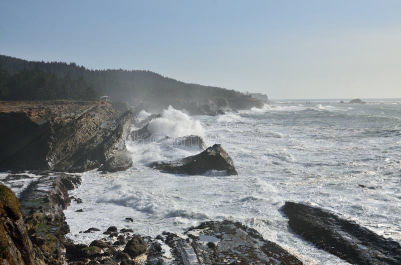 Il gigante ondeggia al parco di stato di acri della riva, Oregon fotografie stock libere da diritti