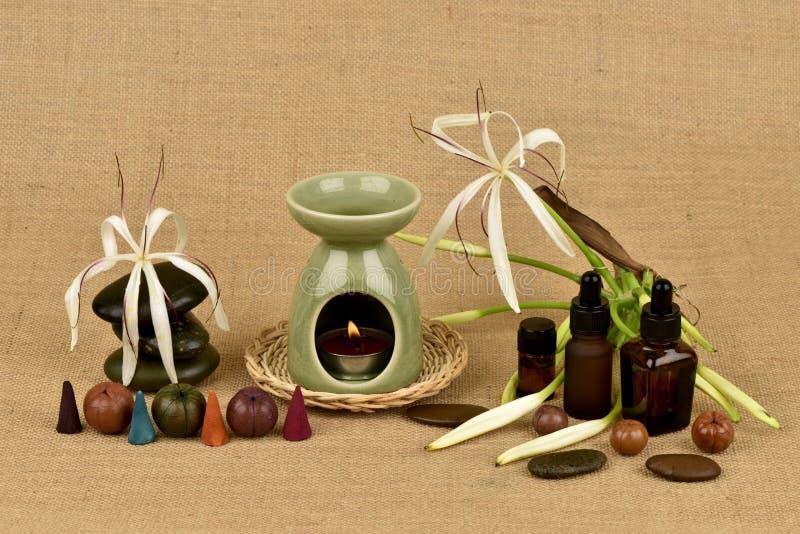 Il giglio di Crinum, i fiori e l'olio essenziale hanno proprietà medicinali fotografia stock