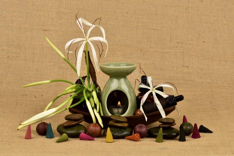 Il giglio di Crinum, i fiori e l'olio essenziale hanno proprietà medicinali immagine stock libera da diritti