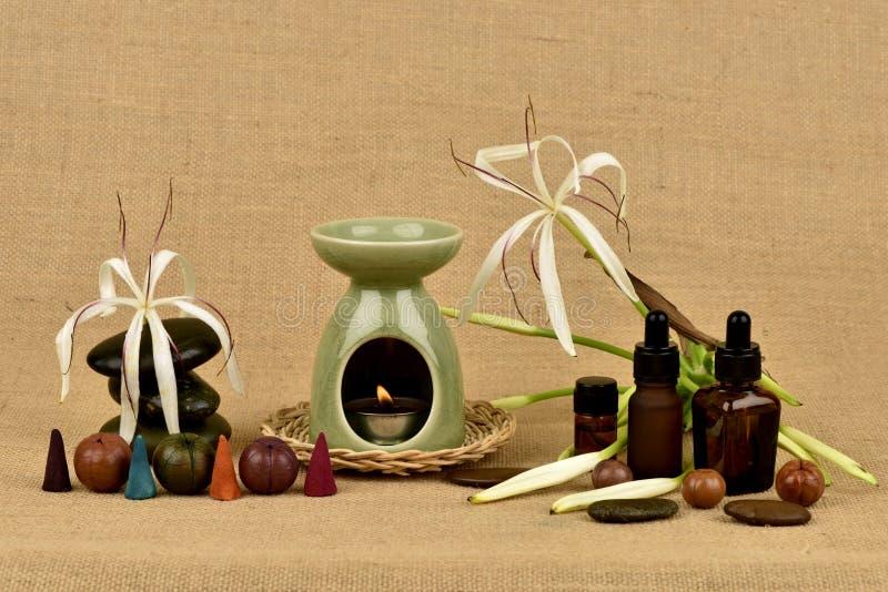 Il giglio di Crinum, i fiori e l'olio essenziale hanno proprietà medicinali fotografia stock libera da diritti