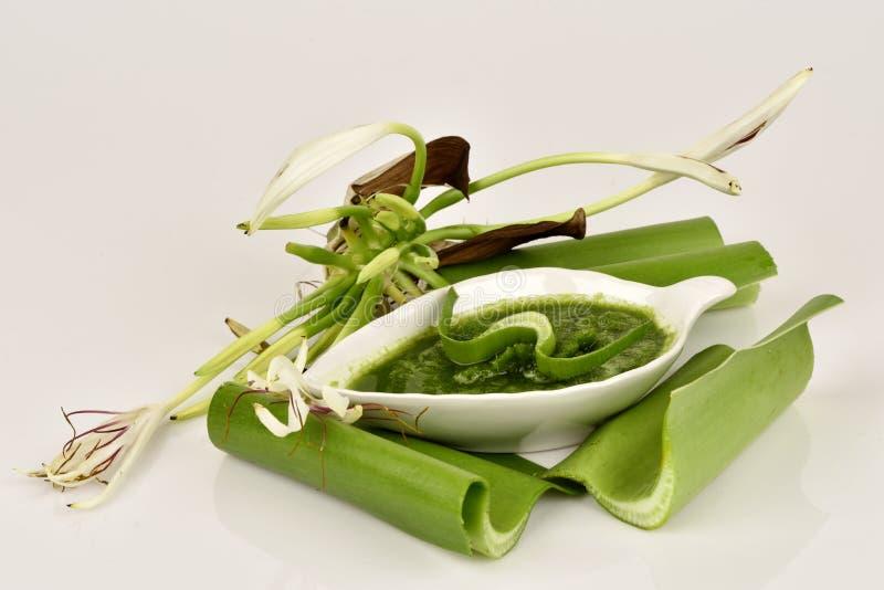 Il giglio di Crinum, i fiori ed il gel naturale hanno proprietà medicinali immagini stock libere da diritti