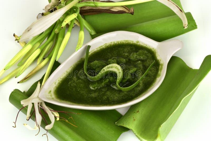 Il giglio di Crinum, i fiori ed il gel naturale hanno proprietà medicinali immagine stock
