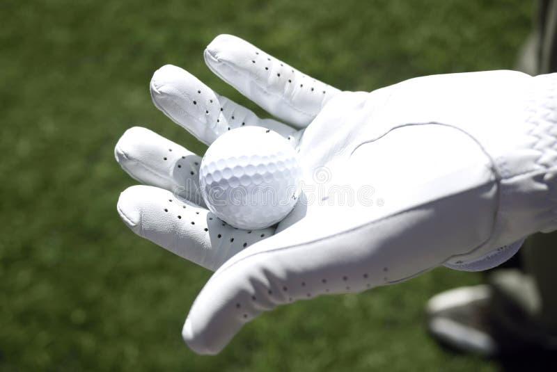 Il giocatore di golf con il guanto bianco tiene una sfera di golf immagine stock