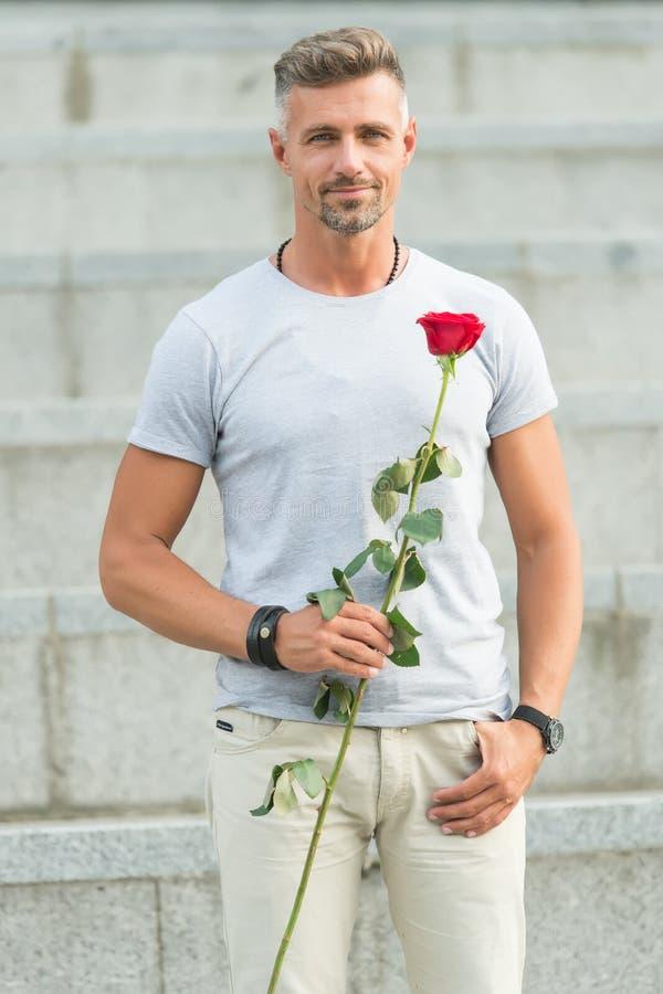 Il giorno delle donne felici a tutte le donne adorabili Uomo barbuto che tiene il fiore del giorno delle donne in primavera Uomo  fotografia stock