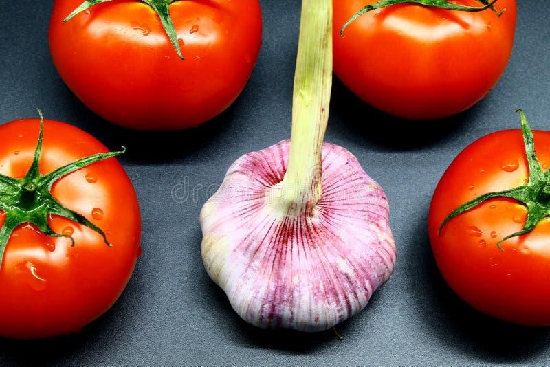 Il giovane aglio ha circondato da quattro pomodori succosi e maturi rossi su un fondo nero fotografie stock libere da diritti