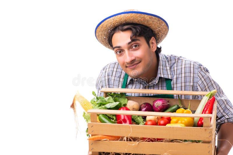Il giovane agricoltore con prodotti freschi isolati su fondo bianco immagini stock