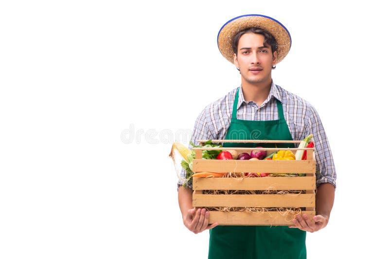 Il giovane agricoltore con prodotti freschi isolati su fondo bianco immagine stock