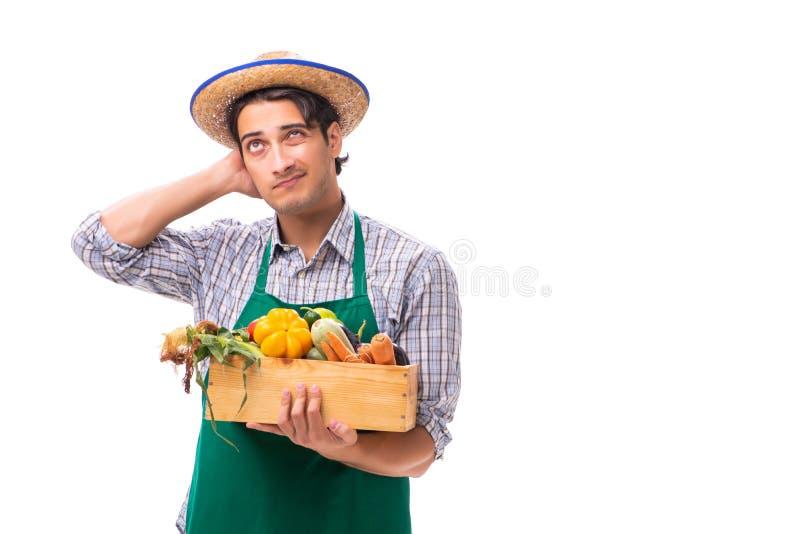 Il giovane agricoltore con prodotti freschi isolati su fondo bianco fotografia stock libera da diritti