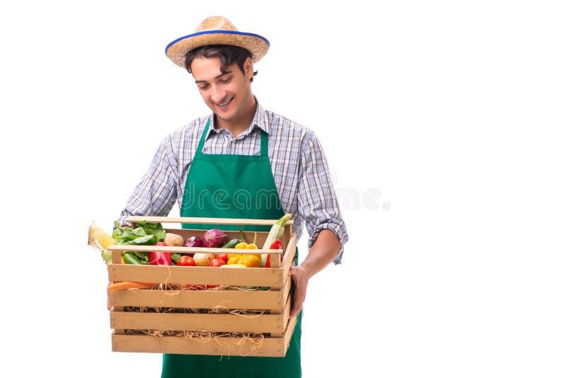Il giovane agricoltore con prodotti freschi isolati su fondo bianco fotografia stock
